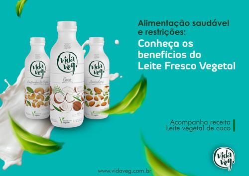 ebook-leite-vegetal-vida-veg